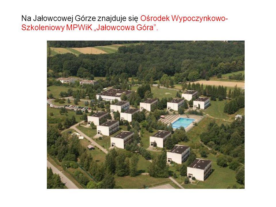 """Na Jałowcowej Górze znajduje się Ośrodek Wypoczynkowo-Szkoleniowy MPWiK """"Jałowcowa Góra ."""