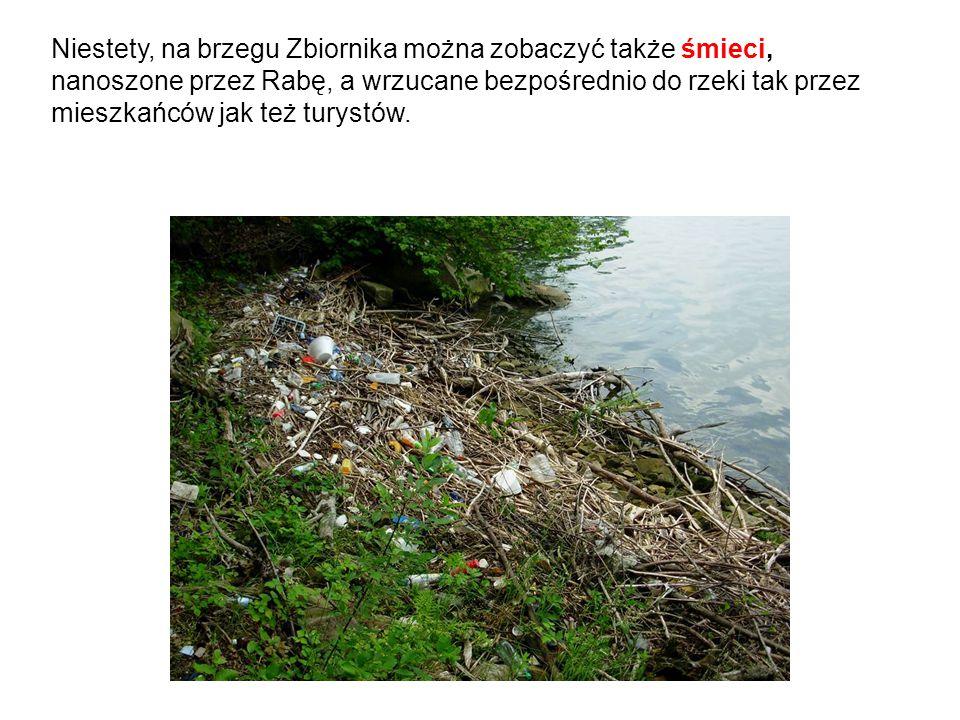 Niestety, na brzegu Zbiornika można zobaczyć także śmieci, nanoszone przez Rabę, a wrzucane bezpośrednio do rzeki tak przez mieszkańców jak też turystów.