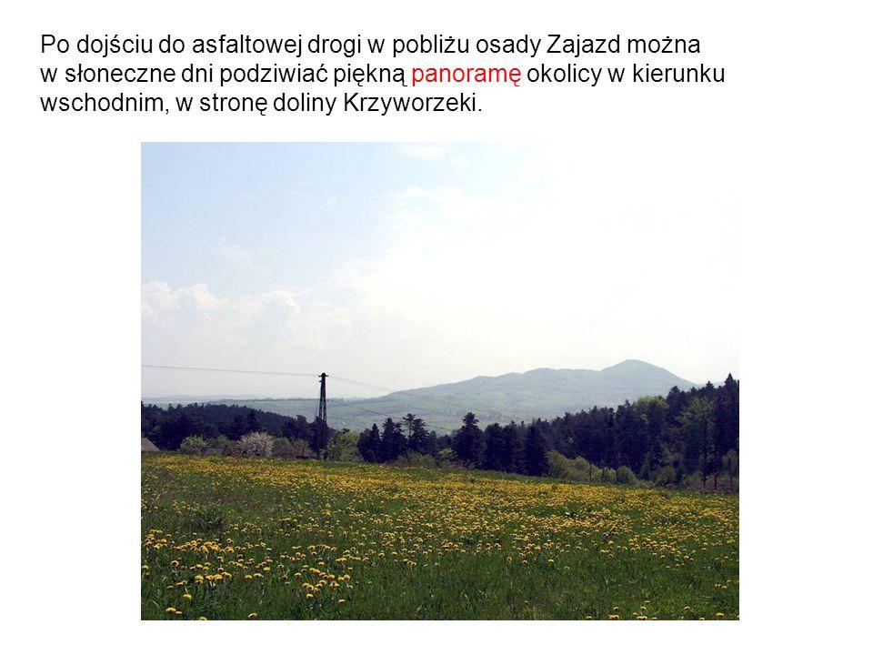 Po dojściu do asfaltowej drogi w pobliżu osady Zajazd można w słoneczne dni podziwiać piękną panoramę okolicy w kierunku wschodnim, w stronę doliny Krzyworzeki.