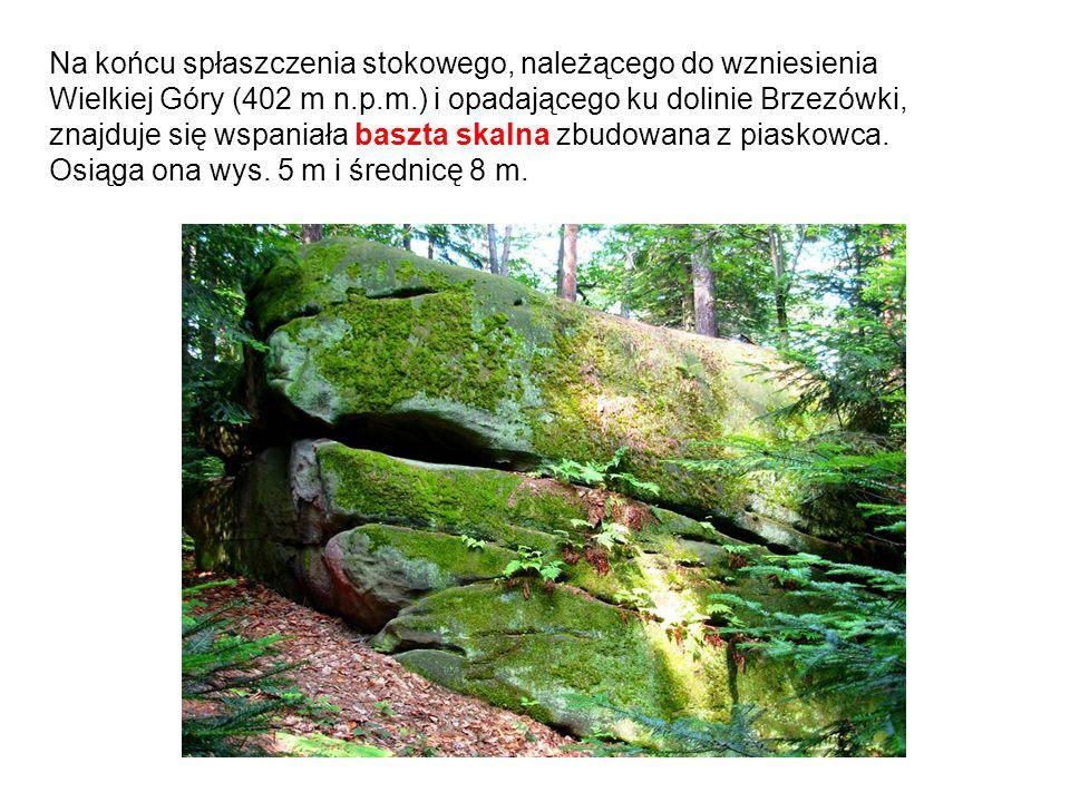 Na końcu spłaszczenia stokowego, należącego do wzniesienia Wielkiej Góry (402 m n.p.m.) i opadającego ku dolinie Brzezówki, znajduje się wspaniała baszta skalna zbudowana z piaskowca.