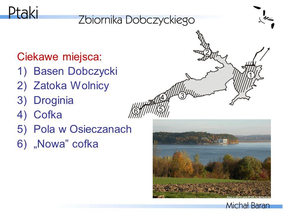 """Ciekawe miejsca: Basen Dobczycki Zatoka Wolnicy Droginia Cofka Pola w Osieczanach """"Nowa cofka"""