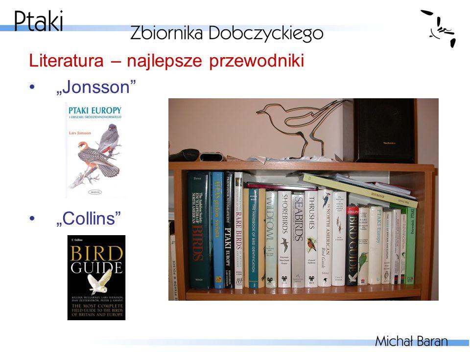 Literatura – najlepsze przewodniki
