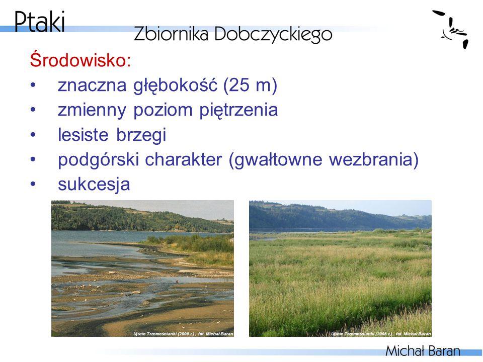 Środowisko: znaczna głębokość (25 m) zmienny poziom piętrzenia. lesiste brzegi. podgórski charakter (gwałtowne wezbrania)