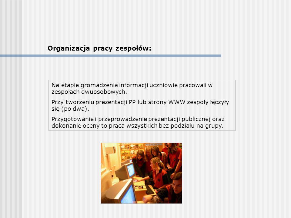 Organizacja pracy zespołów: