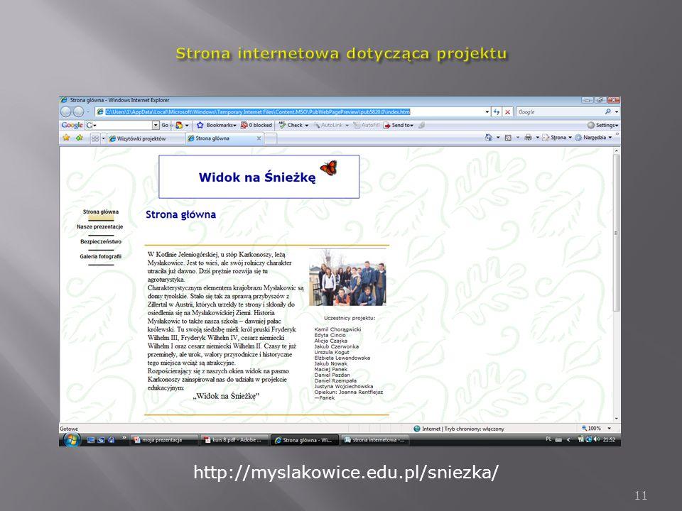 Strona internetowa dotycząca projektu
