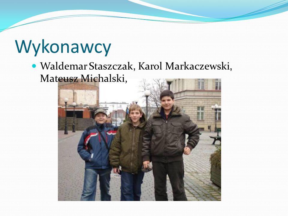 Wykonawcy Waldemar Staszczak, Karol Markaczewski, Mateusz Michalski,