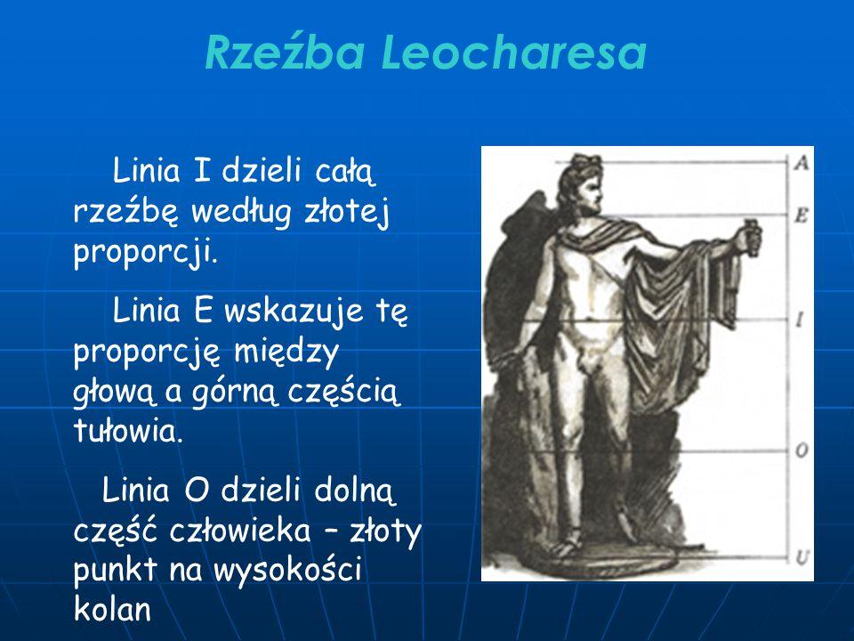 Rzeźba Leocharesa Linia I dzieli całą rzeźbę według złotej proporcji.