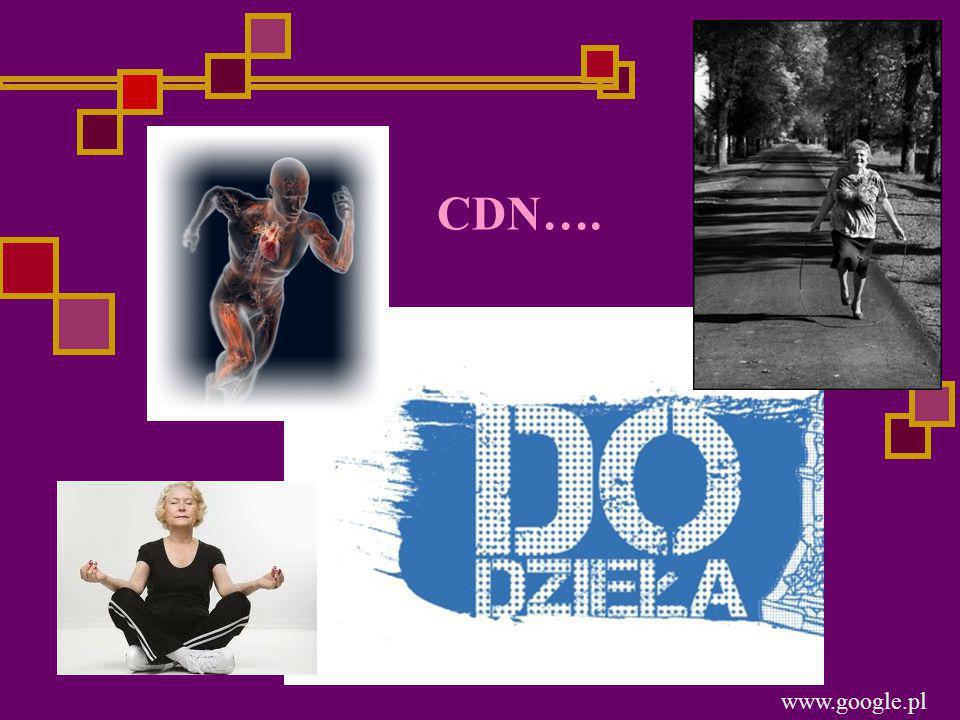 CDN…. www.google.pl