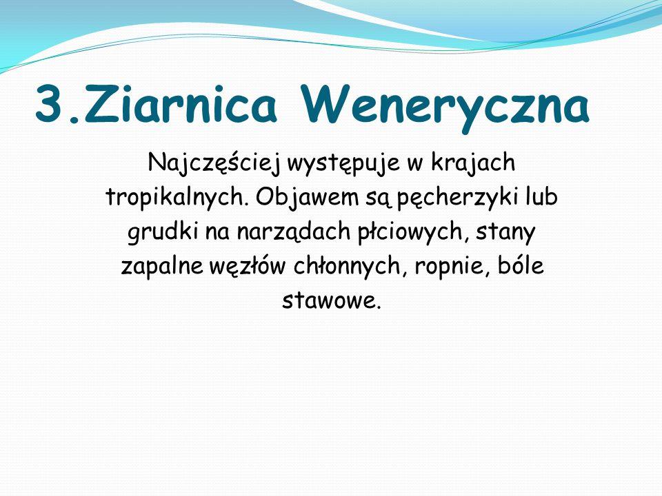 3.Ziarnica Weneryczna