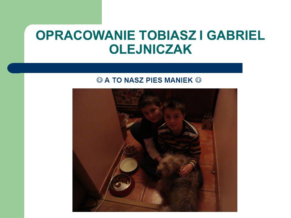OPRACOWANIE TOBIASZ I GABRIEL OLEJNICZAK