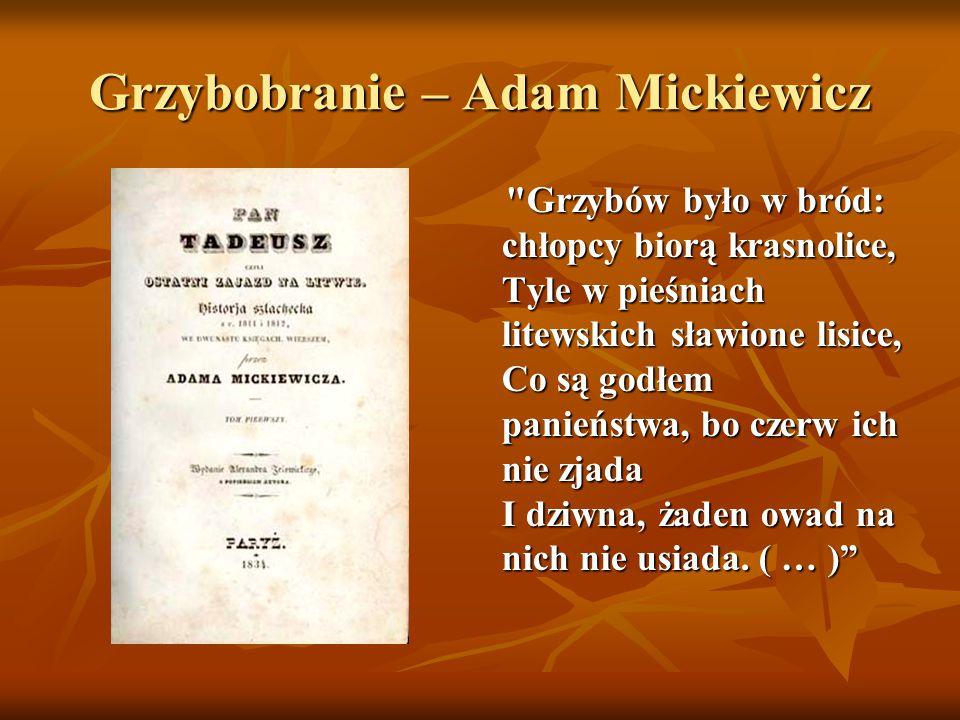 Grzybobranie – Adam Mickiewicz