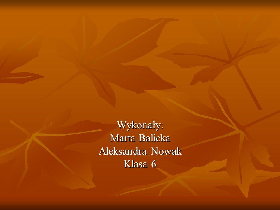 Wykonały: Marta Balicka Aleksandra Nowak Klasa 6