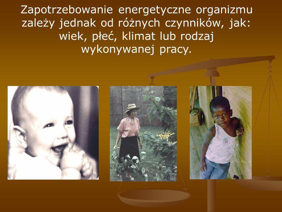 Zapotrzebowanie energetyczne organizmu zależy jednak od różnych czynników, jak: wiek, płeć, klimat lub rodzaj wykonywanej pracy.