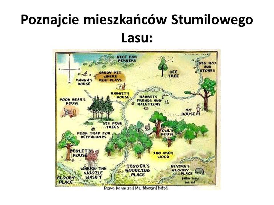 Poznajcie mieszkańców Stumilowego Lasu: