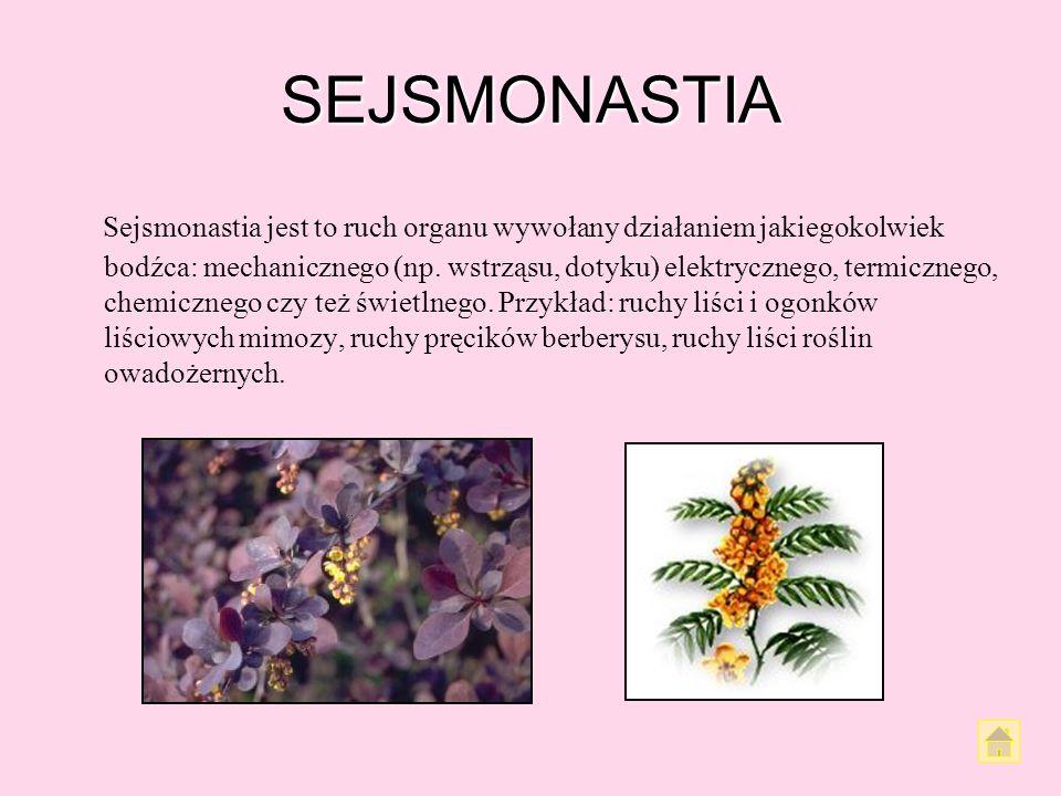 SEJSMONASTIA