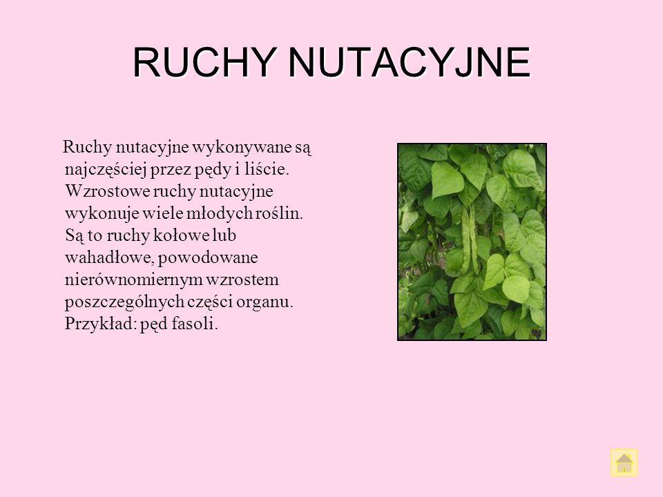 RUCHY NUTACYJNE