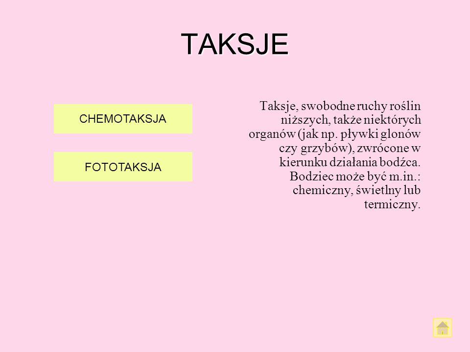 TAKSJE