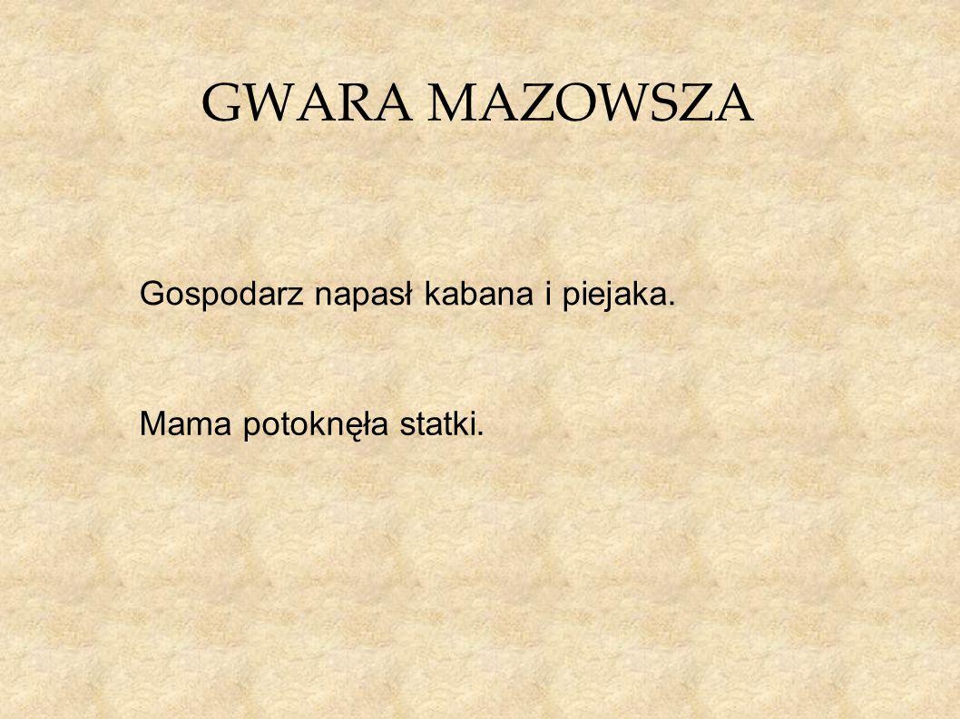 GWARA MAZOWSZA Gospodarz napasł kabana i piejaka.