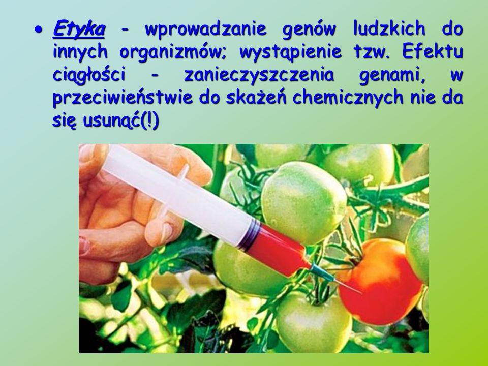 Etyka - wprowadzanie genów ludzkich do innych organizmów; wystąpienie tzw.