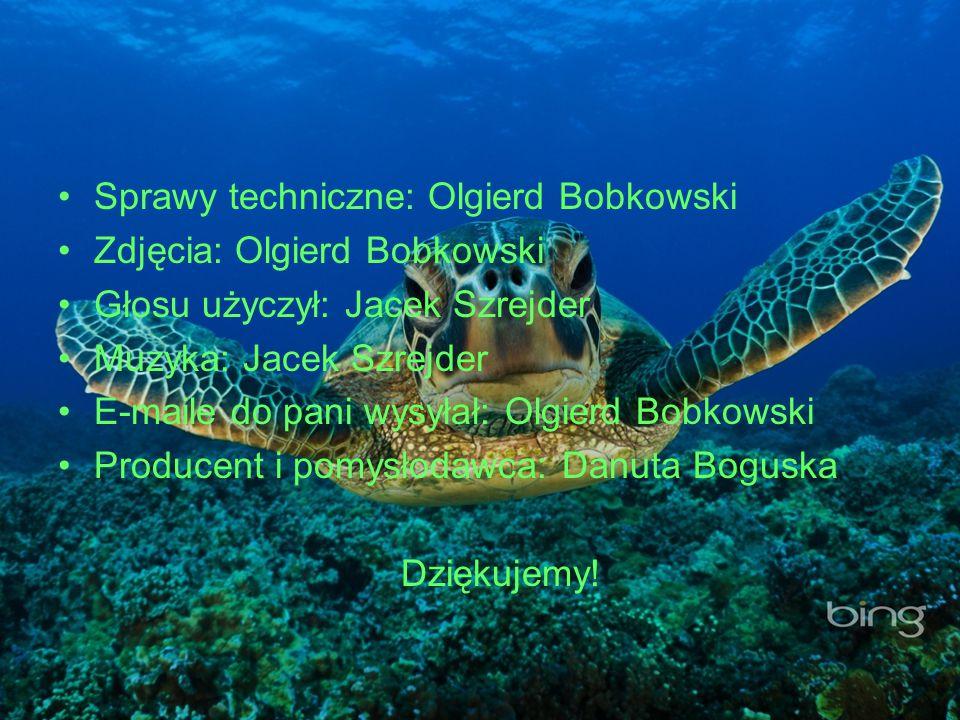 Sprawy techniczne: Olgierd Bobkowski