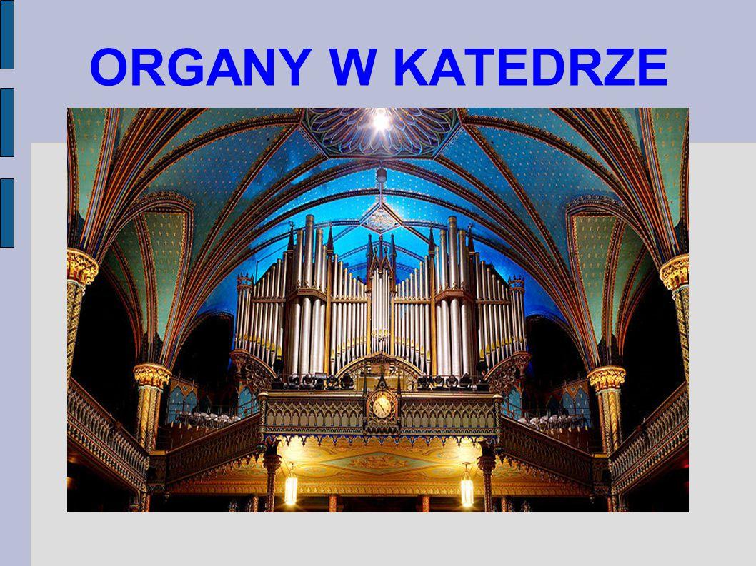 ORGANY W KATEDRZE