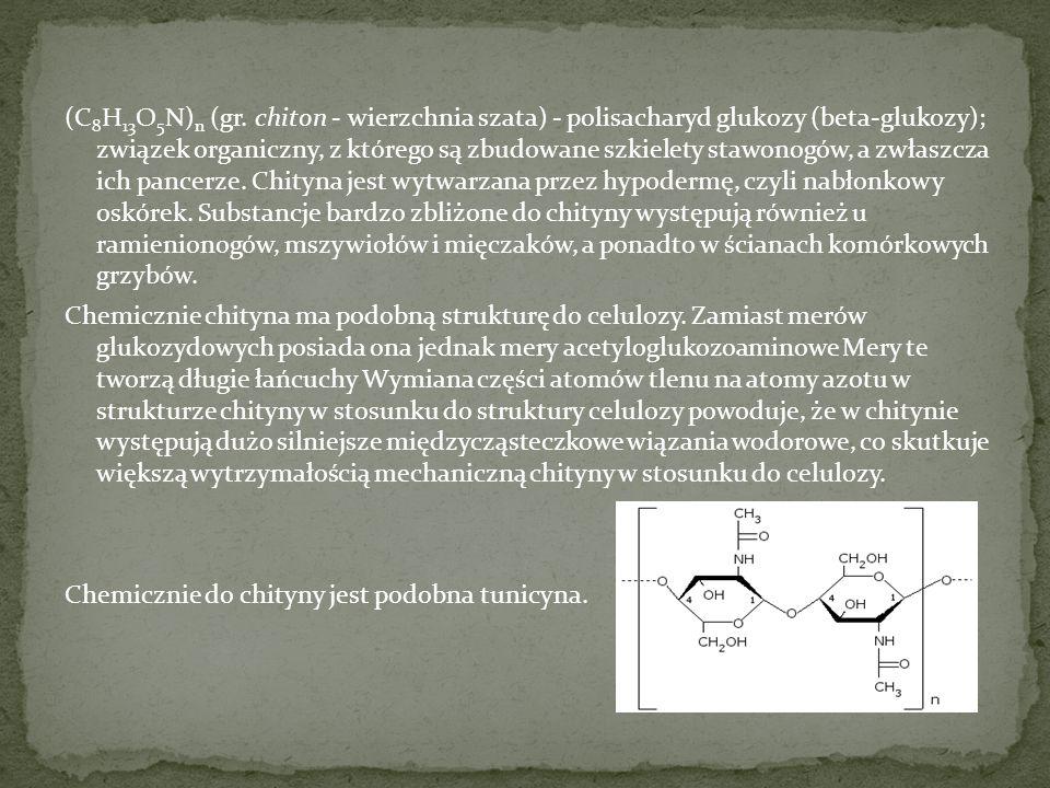 (C8H13O5N)n (gr.