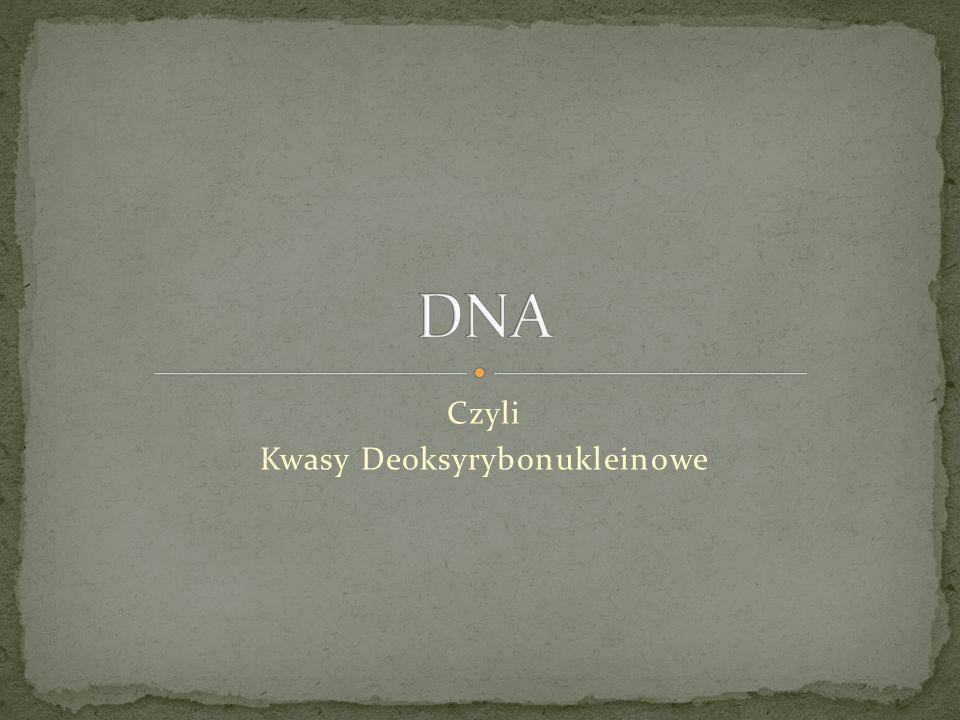 Czyli Kwasy Deoksyrybonukleinowe