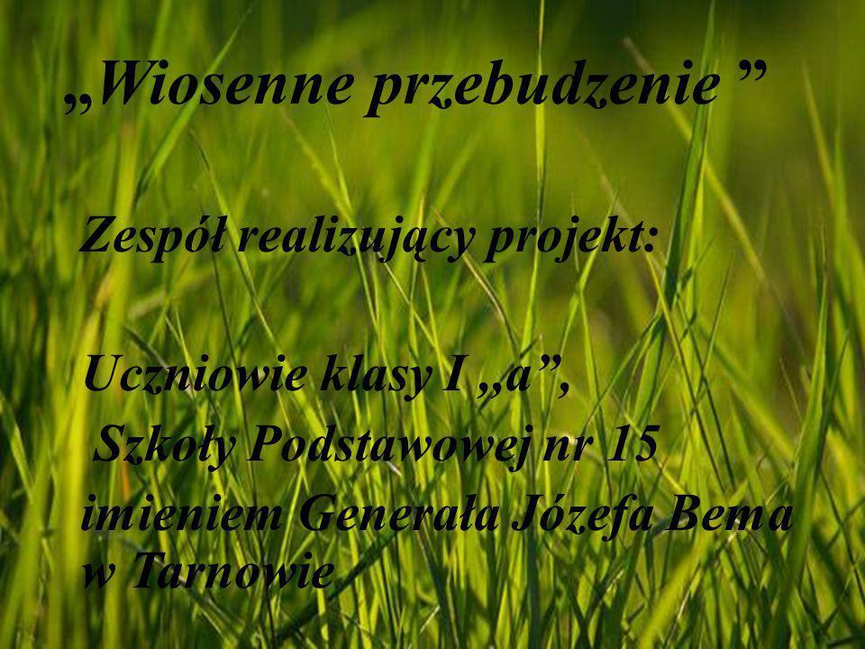 """""""Wiosenne przebudzenie"""