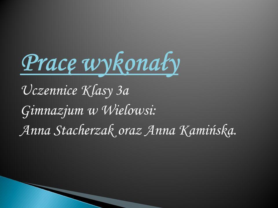 Pracę wykonały Uczennice Klasy 3a Gimnazjum w Wielowsi: