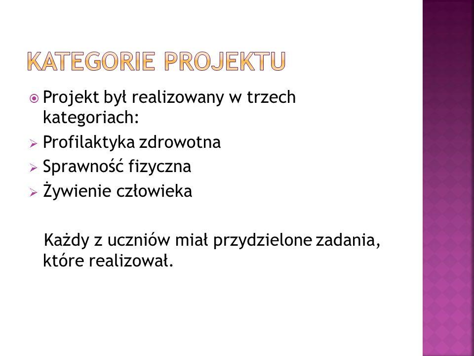 Kategorie projektu Projekt był realizowany w trzech kategoriach: