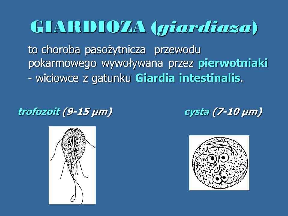 GIARDIOZA (giardiaza)