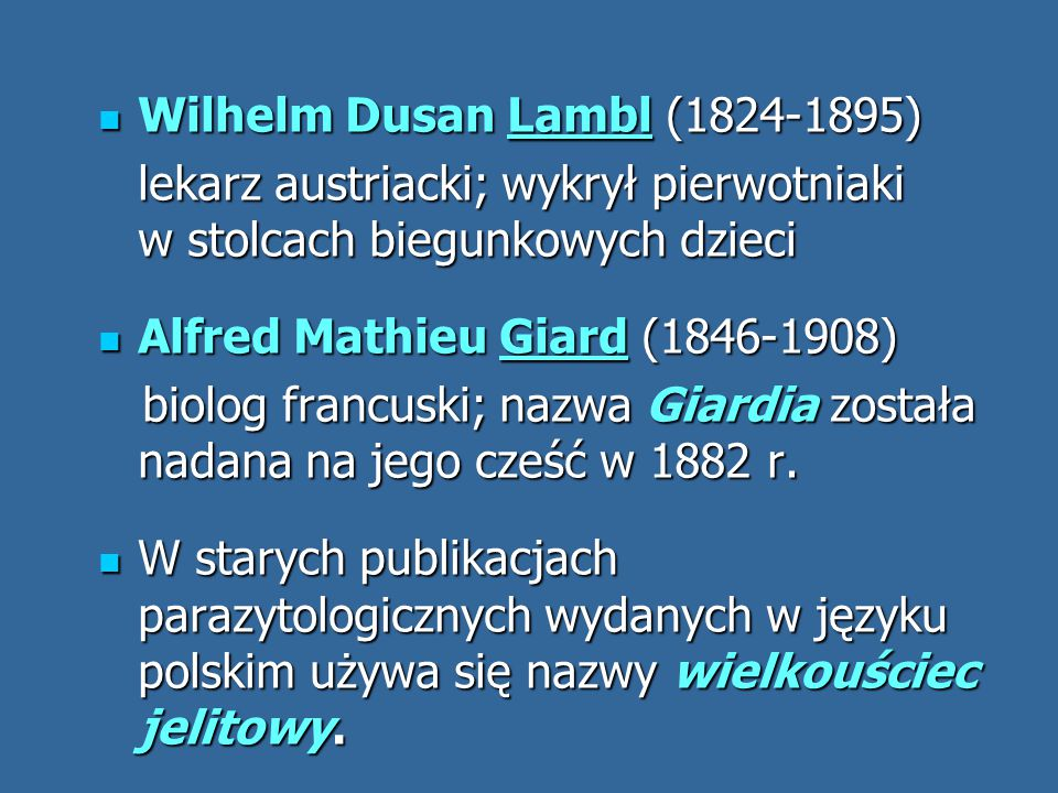 Wilhelm Dusan Lambl (1824-1895)