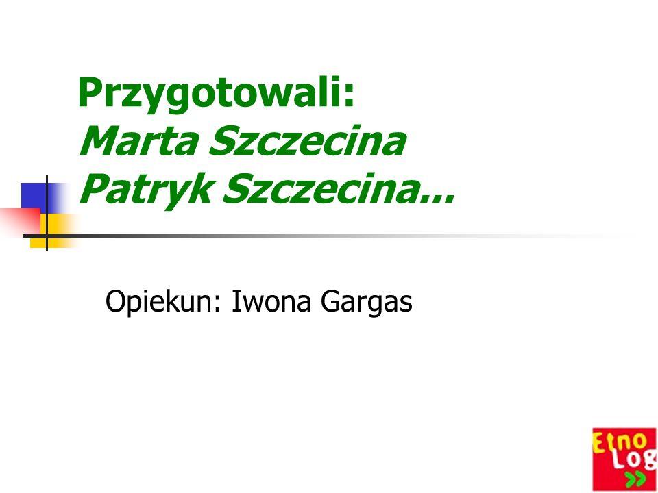 Przygotowali: Marta Szczecina Patryk Szczecina...