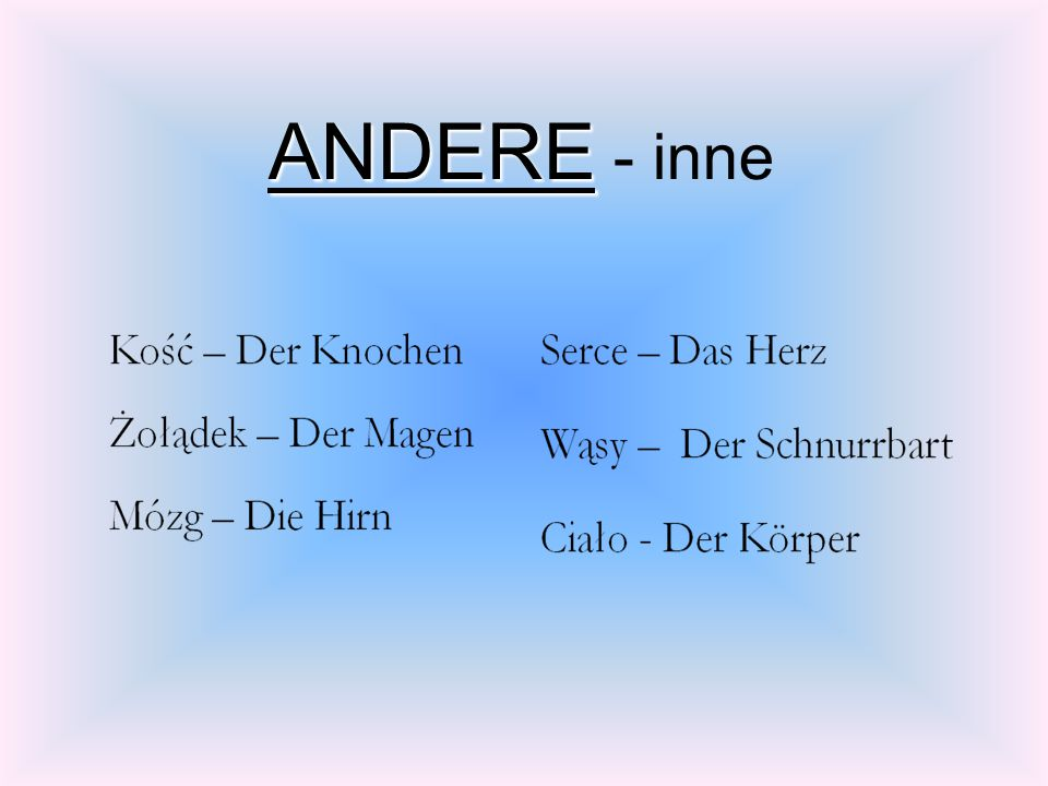 ANDERE - inne