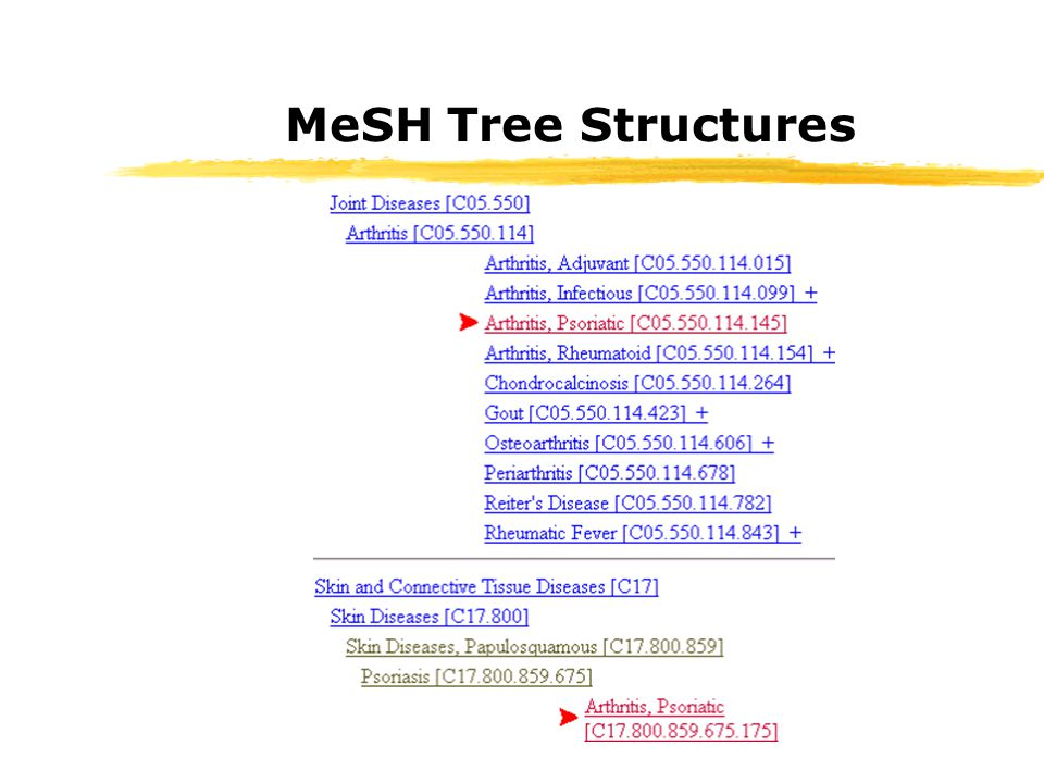 MeSH Tree Structures