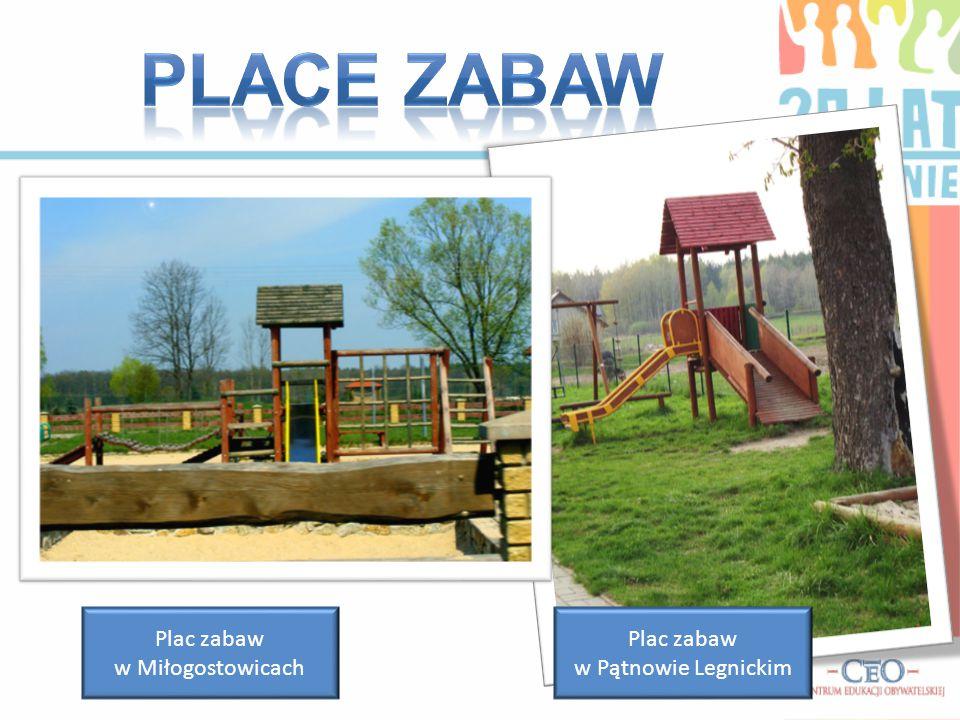 Place zabaw Plac zabaw w Miłogostowicach Plac zabaw