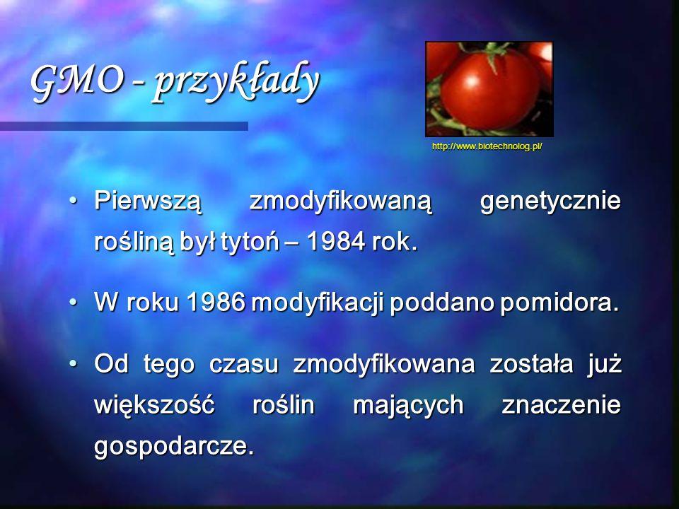 GMO - przykłady http://www.biotechnolog.pl/ Pierwszą zmodyfikowaną genetycznie rośliną był tytoń – 1984 rok.
