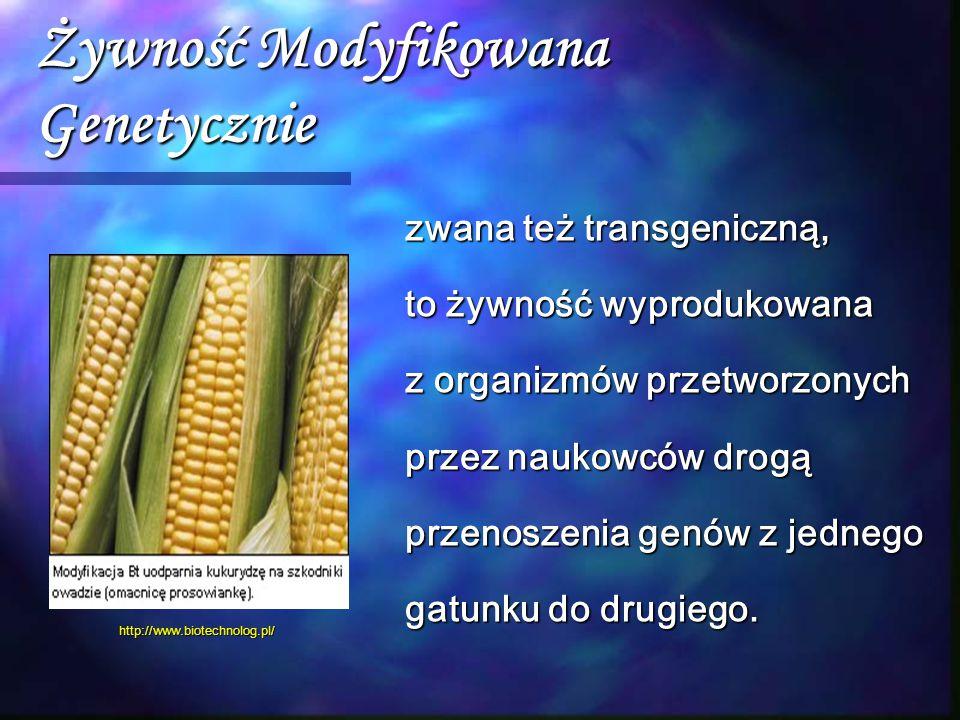 Żywność Modyfikowana Genetycznie