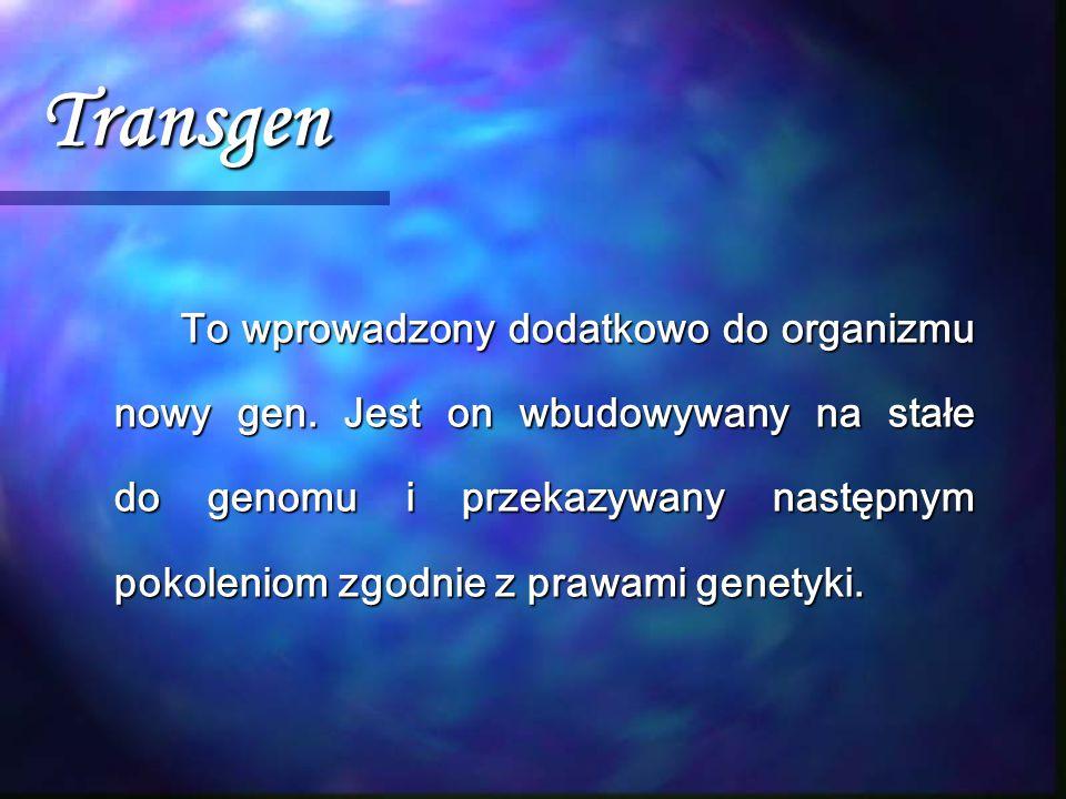 Transgen