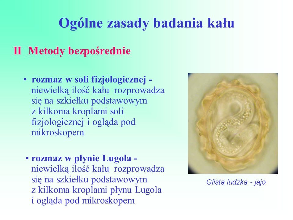 Ogólne zasady badania kału