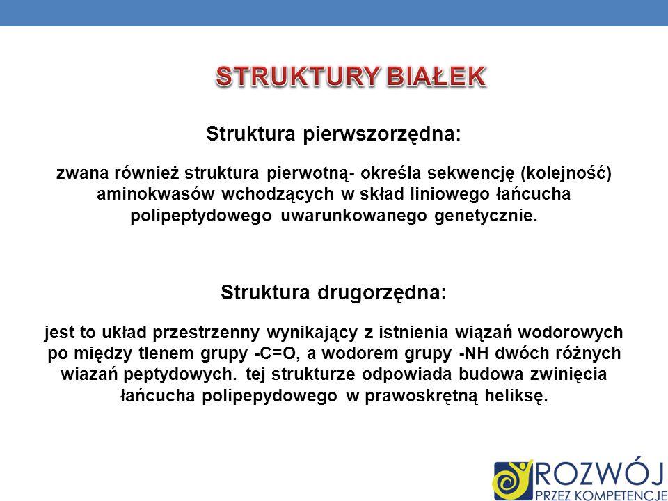 Struktura pierwszorzędna: Struktura drugorzędna: