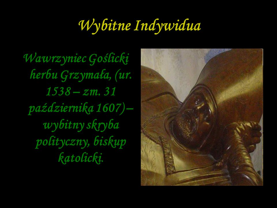 Wybitne Indywidua Wawrzyniec Goślicki herbu Grzymała, (ur.