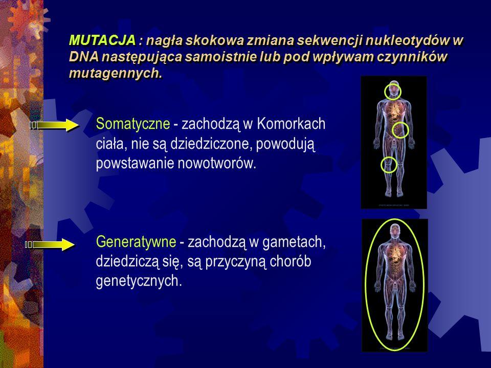 MUTACJA : nagła skokowa zmiana sekwencji nukleotydów w DNA następująca samoistnie lub pod wpływam czynników mutagennych.