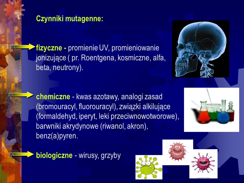 Czynniki mutagenne: fizyczne - promienie UV, promieniowanie. jonizujące ( pr. Roentgena, kosmiczne, alfa,