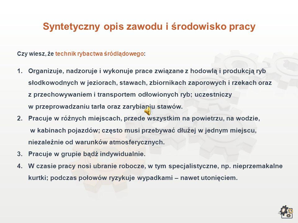 Syntetyczny opis zawodu i środowisko pracy