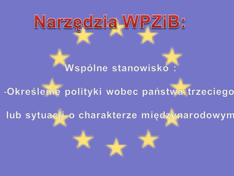 Narzędzia WPZiB: Wspólne stanowisko :