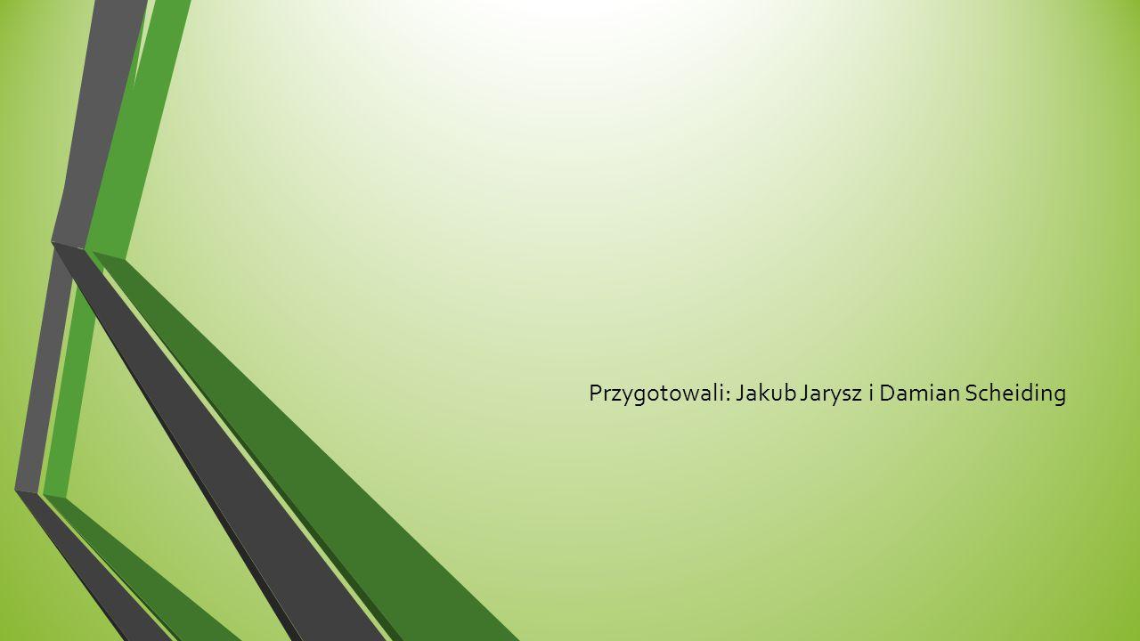 Przygotowali: Jakub Jarysz i Damian Scheiding