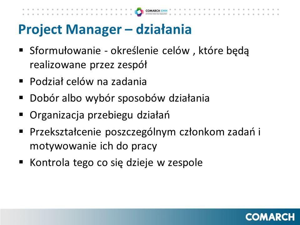 Project Manager – działania