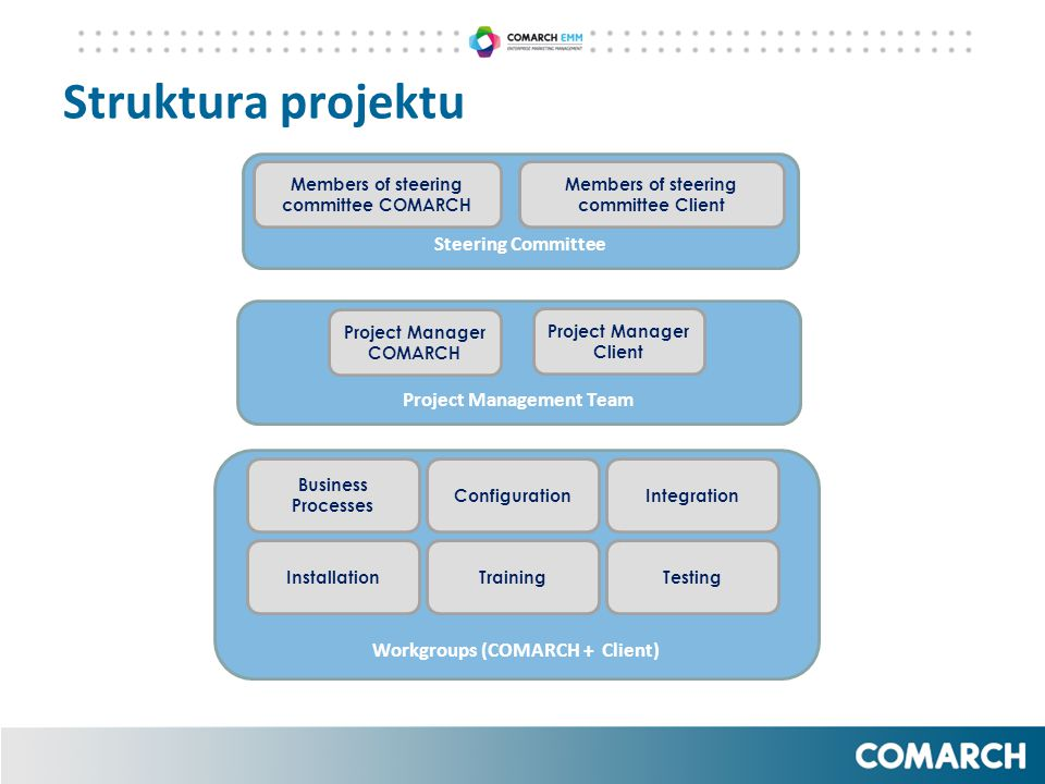 Struktura projektu Steering Committee Project Management Team