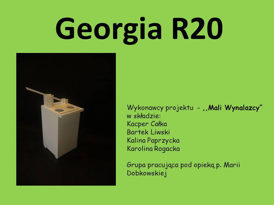 Georgia R20 Wykonawcy projektu - ,,Mali Wynalazcy w składzie:
